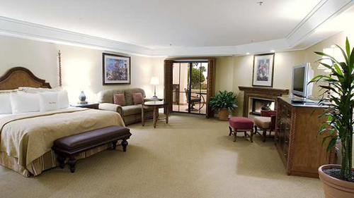 Our Executive Suite
