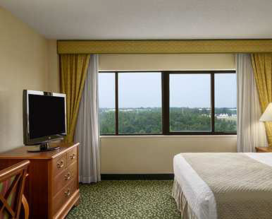 Our Two Room King Suite