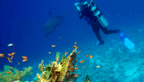 Our Scuba Diver Package in Sharm El Sheikh